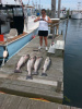 Rhode Island Striper Fishing